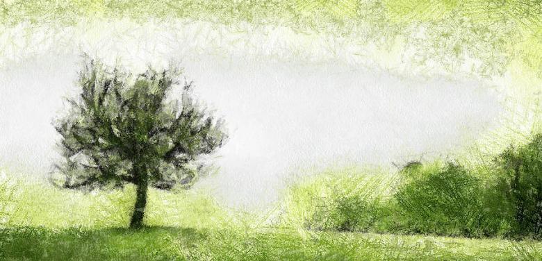 2-tree-odon-czintos
